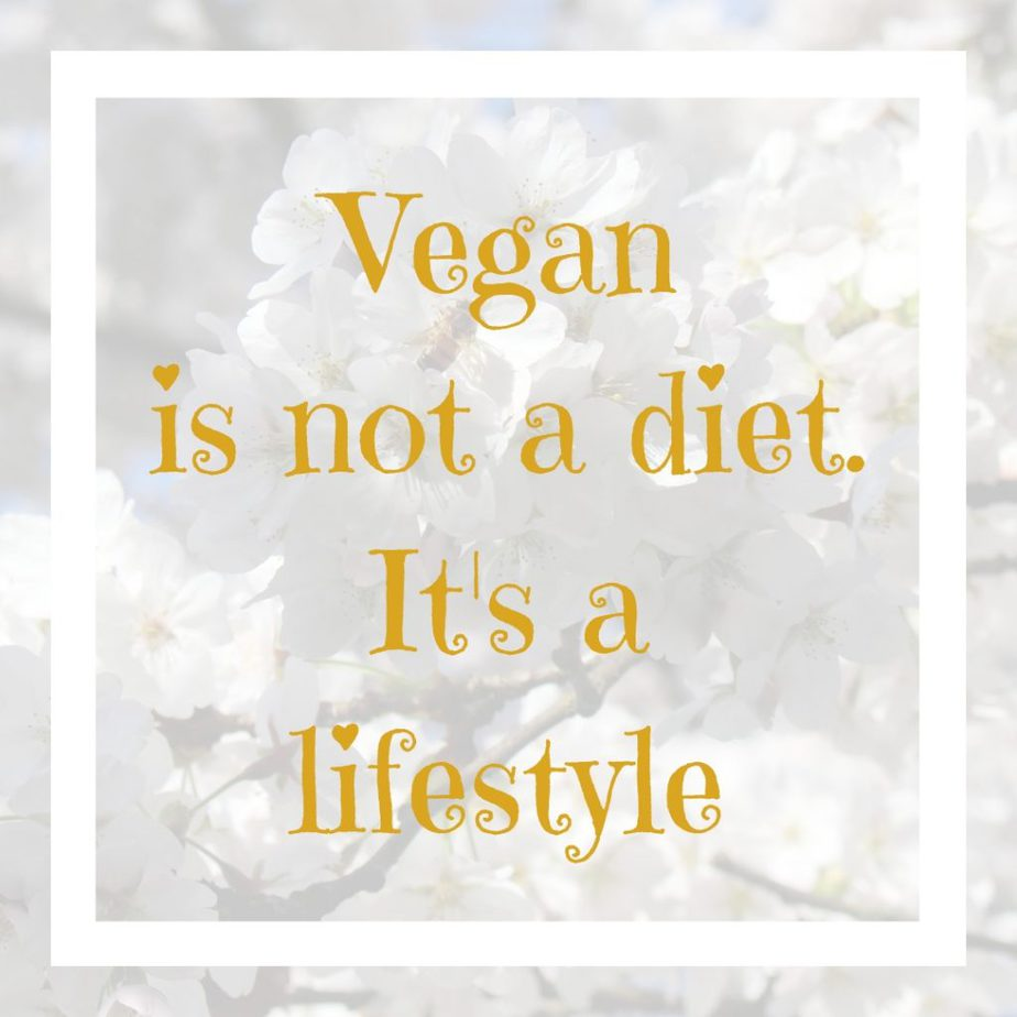 About Pretty Vegan Fit - healthy vegan lifestyle/ Recipes, fitness, skincare and beauty tips. Vegan is not a diet. It's a lifestyle - quote. Pretty Vegan Fit